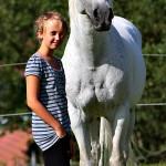 Pferd_BLC_093
