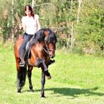 Pferd_BLC_109