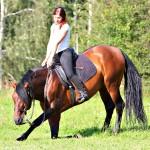 Pferd_BLC_118